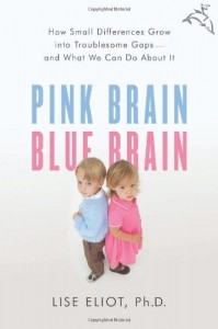 Cover for Pink Brain, Blue Brain