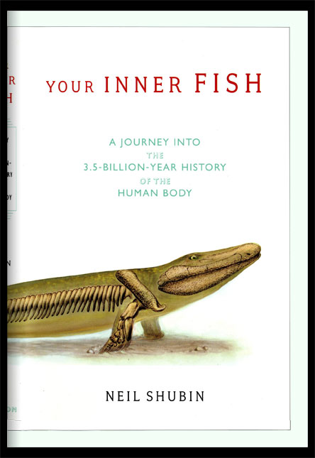 Book cover for Your Inner Fish