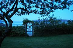 Hollyhock ocean view