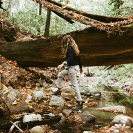 Join our Art of Empathy retreat in the California redwoods in April!